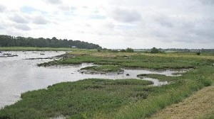 Deben estuary